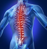 what causes back pain