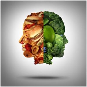 diet and behavior