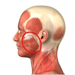 tmj pain relief muscle