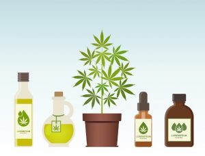 is hemp oil good for you products