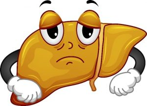 reversing fatty liver disease