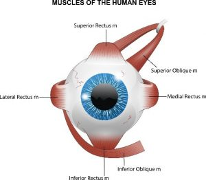 eye pain relief